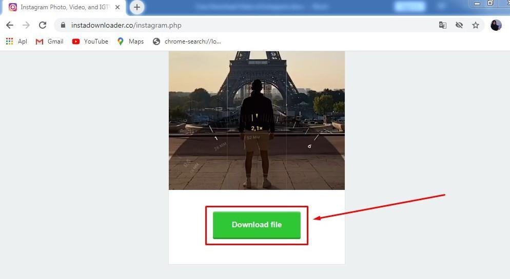 Download Video Melalui InstaDownloader