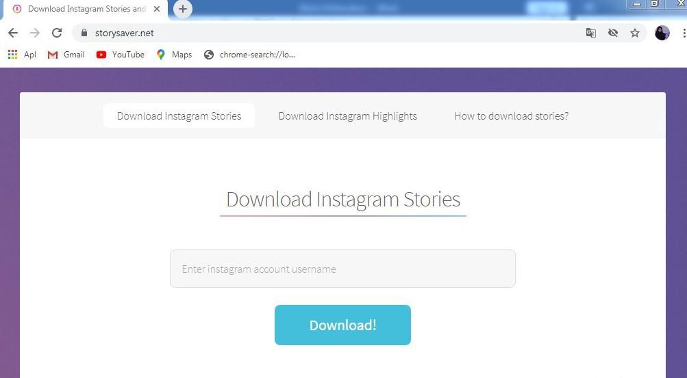 Tampilan Situs Storysaver